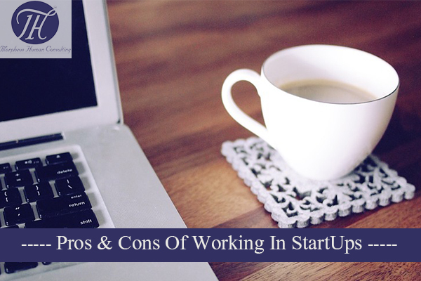 Pros cons working startup company