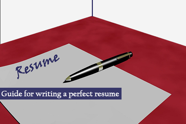 guide for writing a perfect resume