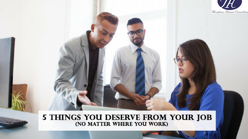 5 Things You Deserve From Your Job (No Matter Where You Work)