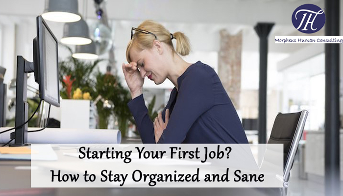Starting Your First Job? How to Stay Organized and Sane